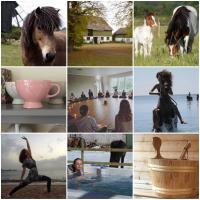 Ölands Yoga Studio, Stugor & Rum, hotel in Mörbylånga