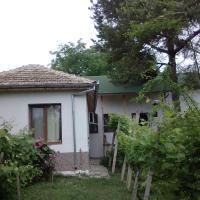 Екологична къща за гости