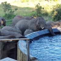 Nambiti Plains, hotel in Nambiti Private Game Reserve