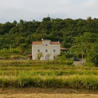 Vila Flora