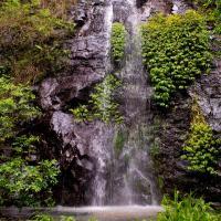 Nimbin waterfall retreat, hotel in Nimbin