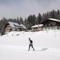 Hotel Tischlbergerhof, hotel in Ramsau am Dachstein