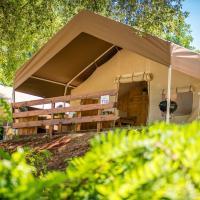 Sunflower Camping