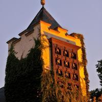 Breuer's Rüdesheimer Schloss, hotel in Rüdesheim am Rhein
