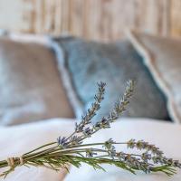 LAAREIND Bed & Breakfast, hotel in Waalre