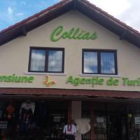Collias, hotel in Horezu