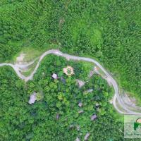 Bago Yoma Eco Resort, отель в городе Pyay