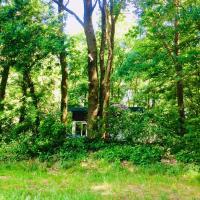 Boshuisje / Forest house