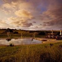 Hlosi Game Lodge - Amakhala Game Reserve, hotel in Amakhala Game Reserve