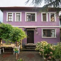 Villa Banizo Great Black Sea View Village House, hotel in Trabzon