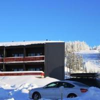 Skivillas 47 a2, hotel in Hyrynsalmi