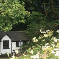 Oak Tree Cottage, hotel in Cilgerran
