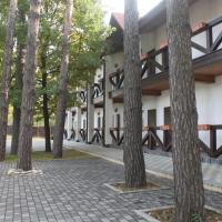 Готель Таверна, hotel in Romankiv