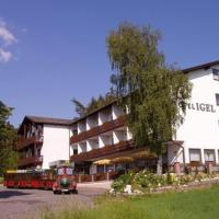 Hotel Igel, hotel in Püchersreuth