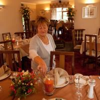 Hanora's Cottage Guesthouse and Restaurant, hotel in Ballymacarbry