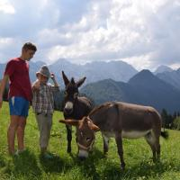 "Farm Stay ""Alpine Dreams"", hotel in Solčava"