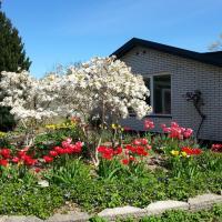 Mini-apartment in the flowerbed