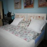 Venkovské apartmány Tiché pastviny, hotel v Kamenickém Šenově
