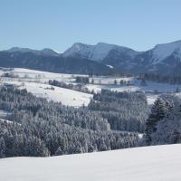 Ferienwohnung Nagelfluh Allgäu, hotel in Oberreute