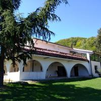 """""""CARA PACE"""" in collina"""