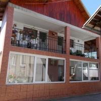Pensiunea Vasilescu, hotel in Horezu