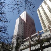 Ibis Santos Gonzaga, hotel em Santos