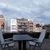 Dakstudio Met Reuze Zonneterras, отель в городе Миделкерк