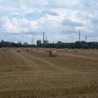 Glück Auf! Urlaub und Erholung in Duisburg