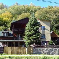 Willa Rytro dom w górach, hotel di Rytro