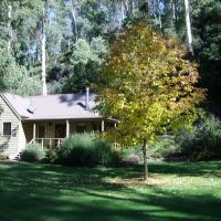 shady brook cottages, hotel em Harrietville