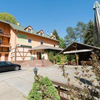 Pension U Stříbrného Jelena, hotel in Cheb