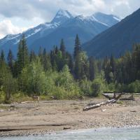 Panorama Vacation Retreat at Horsethief Lodge