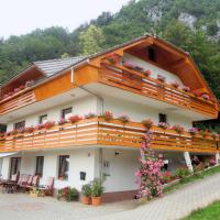 Fine Stay Apartments, hotel in Žirovnica