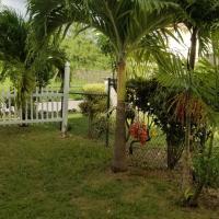 Cynson Villa Holiday Accommodations