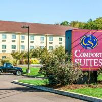 Comfort Suites Bloomsburg, hotel in Bloomsburg