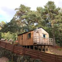 Pine Marten Bar Glenmore Treehouse