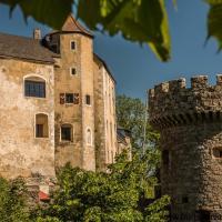 Burg Plankenstein, hôtel à Texing