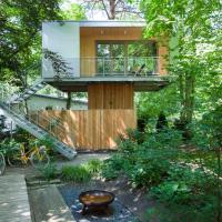 Urban Tree House