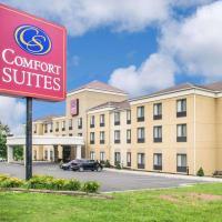 Comfort Suites Vestal near University