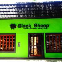 Black Sheep International Hostel