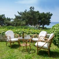 BEACH HOUSE NEAR ATHENS, hotel in Aghia Marina