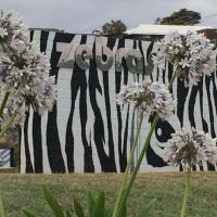 Zebras Guesthouse, hotel em Geraldton