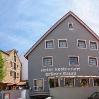 Hotel Restaurant Grüner Baum und Altes Tor, Hotel in Bad Waldsee