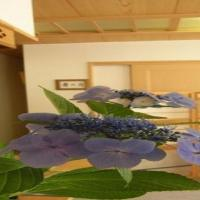 Ichigekan / Vacation STAY 8476、中之条町のホテル