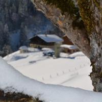 Ferienbauernhof Elmaugut