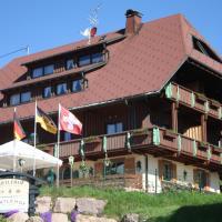 Hotel Bartlehof, отель в городе Шлухзе