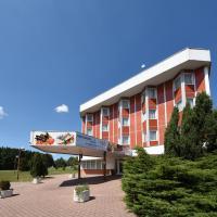 Hotel Regent, hotel v destinaci Třeboň