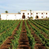 Agriturismo Baglio Donnafranca Wine Resort, Hotel in Marsala