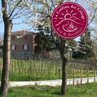 B&BLa collina dei ciliegi, hotel a Cassano Spinola