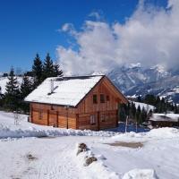 Hüttendorf Dachsteinblick - Ski In Ski Out